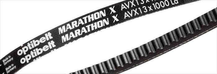 Optibelt AVX 13 x 875 Optibelt-Marathon 1 Keilriemen