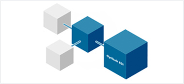 Our E-Services: Optibelt EDI, Optibelt e-shop, Optibelt Connect